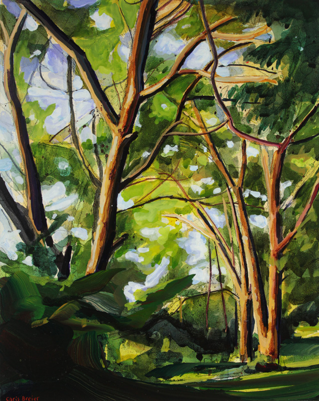 A painting of trees at Niawanda Park